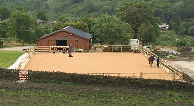 horse arena with horses and stable