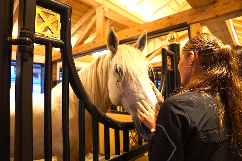 woman with horse in stable