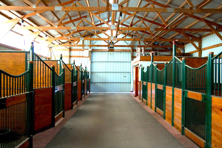 new horse stables interior