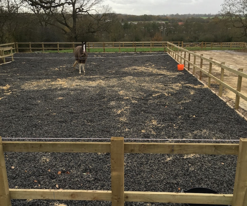 turnout pen with horse